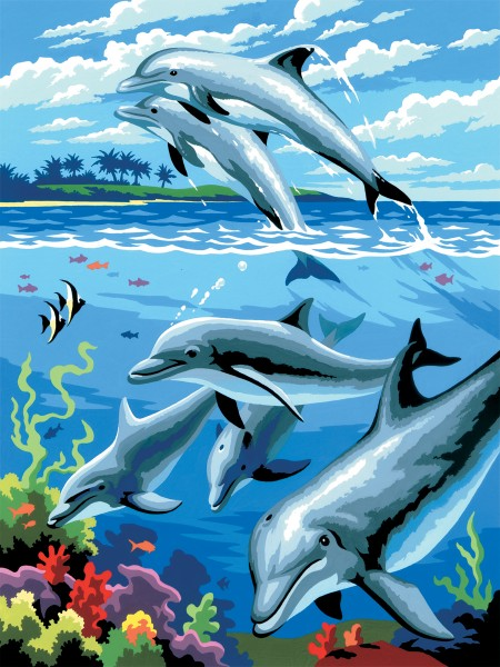 PJS Dolphins