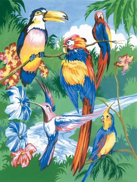 PJS Tropical Birds